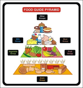 Food Guide Pyramid - Including Groups ( Grain, Fruit, vegetable,